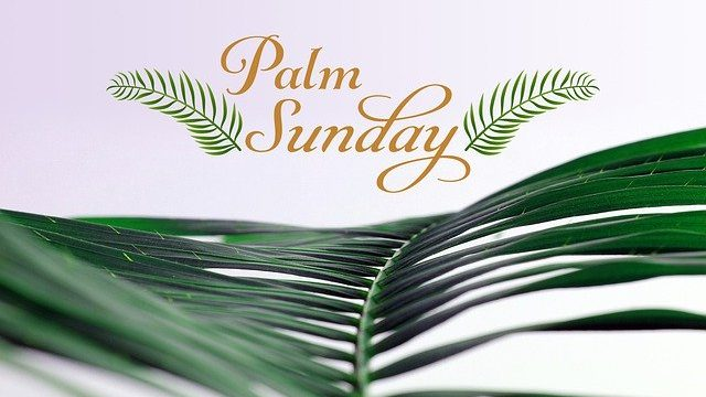 Palm Sunday palm branch