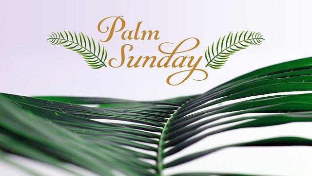 Palm Sunday palm branch